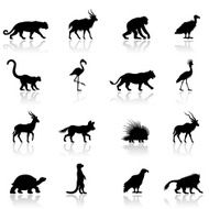 African Animal Silhouettes N6