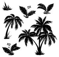 Palm trees flowers and grass silhouettes