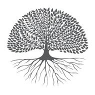 Black and white drawing of deciduous tree silhouette
