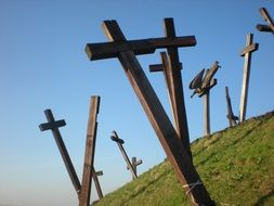 wooden crosses on a green hill