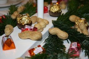 Decoration of peanuts for christmas