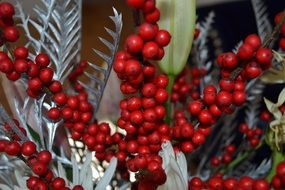 red berry decoration xmas