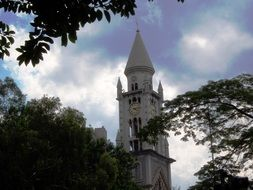 the bell tower of the church behind the trees