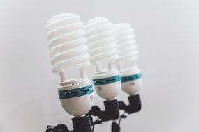 three light spiral bulbs