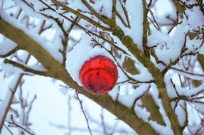 snow sphere christmas decoration