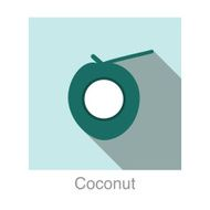Coconut food and drink flat icon series N3