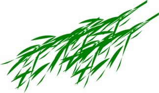 bamboo branches leaves drawing