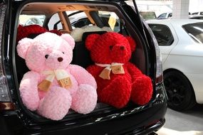 red and pink teddy toy