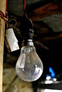 light bulb electric N6