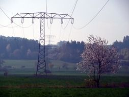 power poles in rural areas