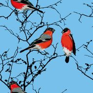 Bullfinches on the branch cyan seamless vector pattern