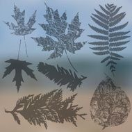 Vector collection of leaf silhouettes leaves N9