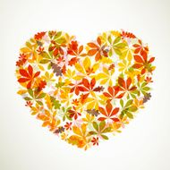 Vector autumn leaves N23