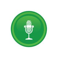 microphone icon web N29