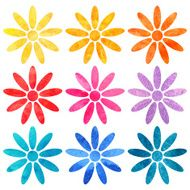 Watercolor set of rainbow daisy flowers isolated