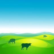 cow grazes in a meadow - vector