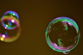 multicolored soap bubbles on a blurred background