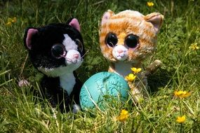 two plush kittens and a ball on a green meadow