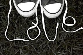 white laces for athletic shoes
