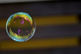 soap bubble colorful ball N29