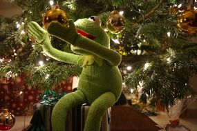 green frog under christmas tree