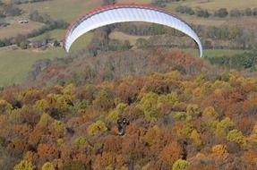 paragliding over the forest