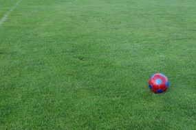 football ground grass