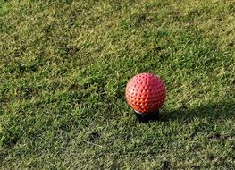 Red golf ball on a grass