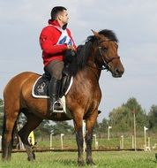 riding ,games, the horse je C5 BCdziec
