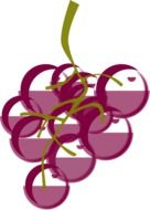 drawing of a bunch of pink grapes