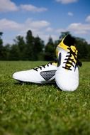soccer shoes on the field
