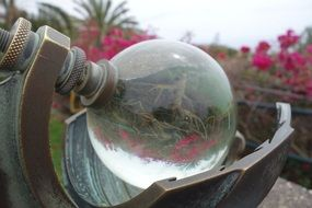 glass ball in a garden