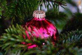christmas tree with pink glass ball