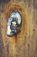 picture of the doorknocker on wooden door