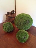 grass balls like japanese decor