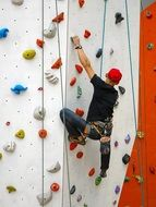 climbing wall bodybuilding