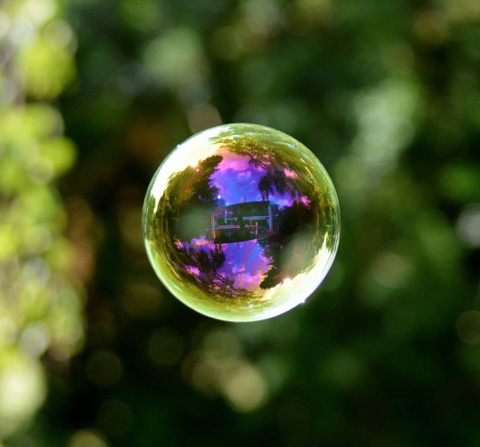 colorful soap bubble on a background of trees