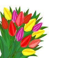 Colorful tulips bouquet N2