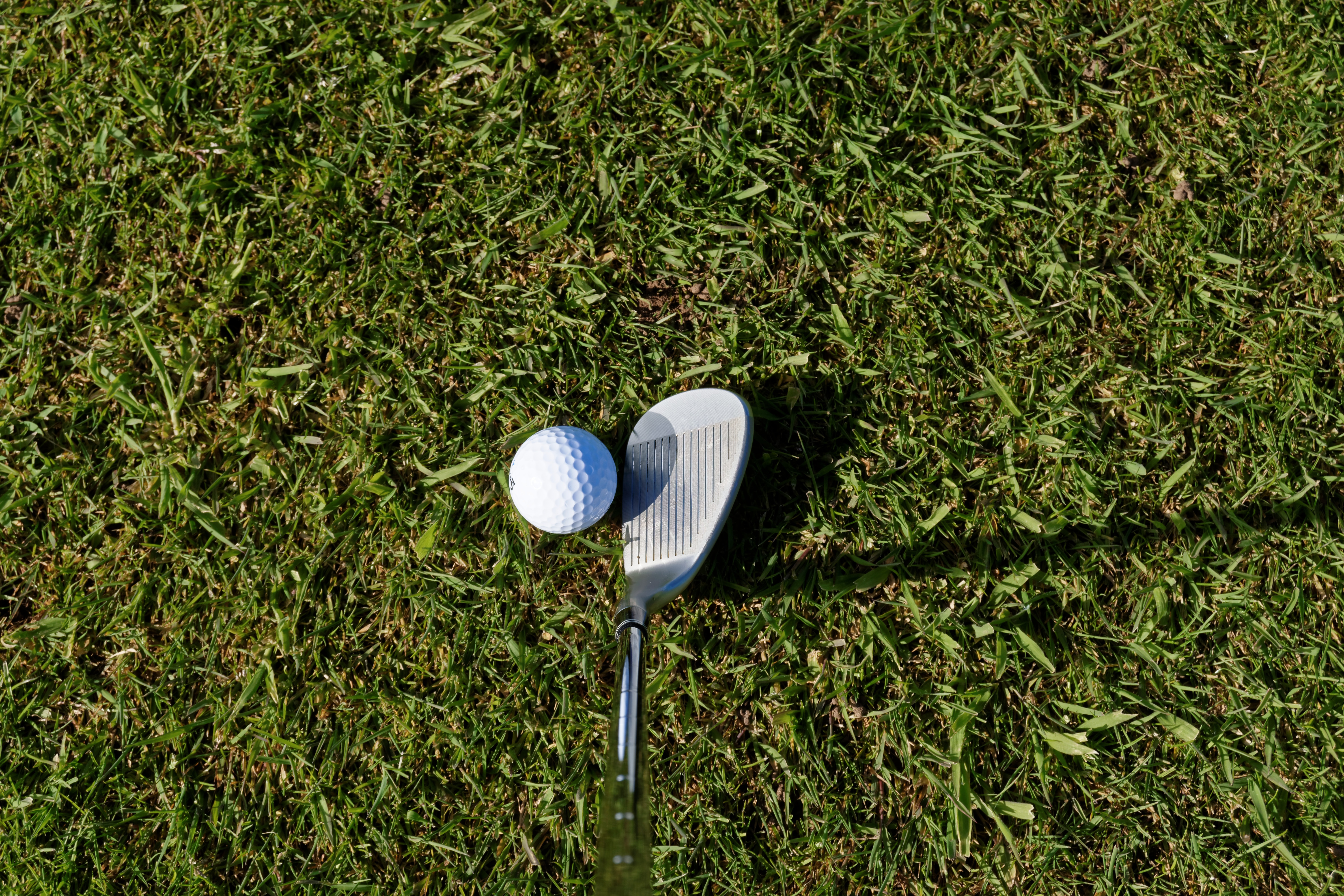 White Ball And Golf Club Free Image