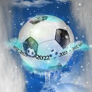 football world championship in 2022