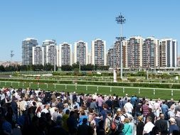 the crowd at the races in Istanbul