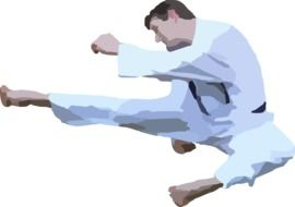 graphic image of a karate man in a jump