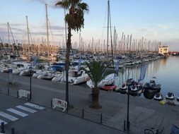 yachts in the port in the evening