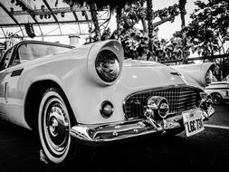 vintage classic car in black and white