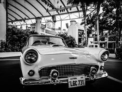 classic car automobile retro 1956 black and white