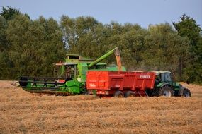 harvesting on the field in autumn