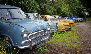 Colorful old retro vintage cars among the plants