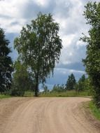 country road in summer