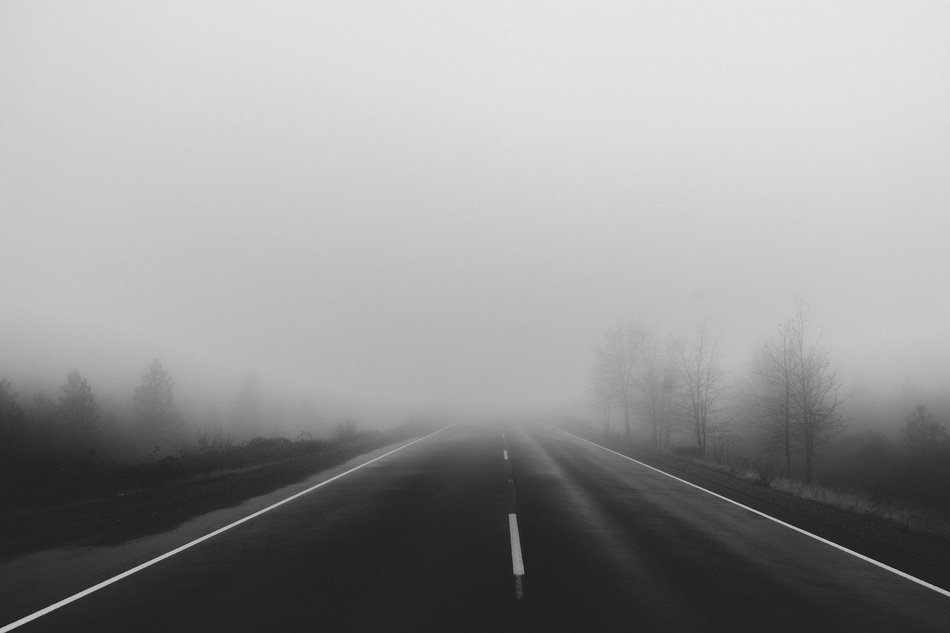 fog over the road
