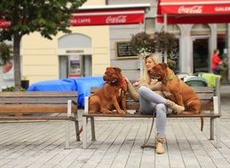 Girl with two dogs on a bench in the street